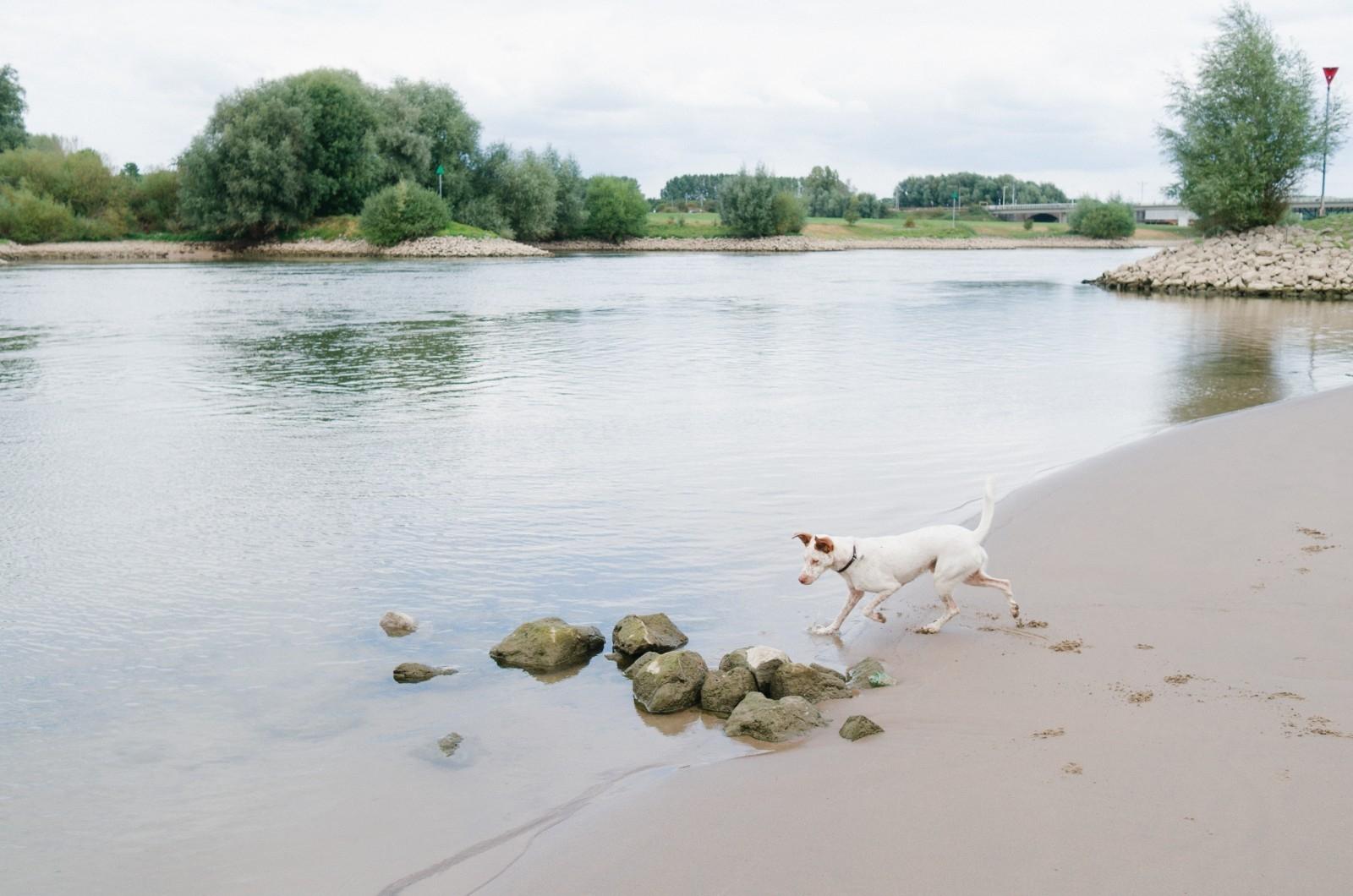 Leica_X-E_Article_Jip_van_Kuijk_8